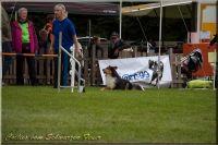 30.08.2014-053-Brianna-Jumping
