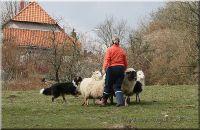 28.03.2009-hueten-013
