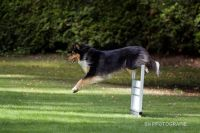 Brianna_LM-obedience_2014