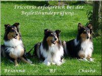 brianna-chiara-bh-2010