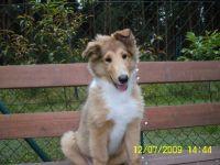 Clyde-Juli-2009-7